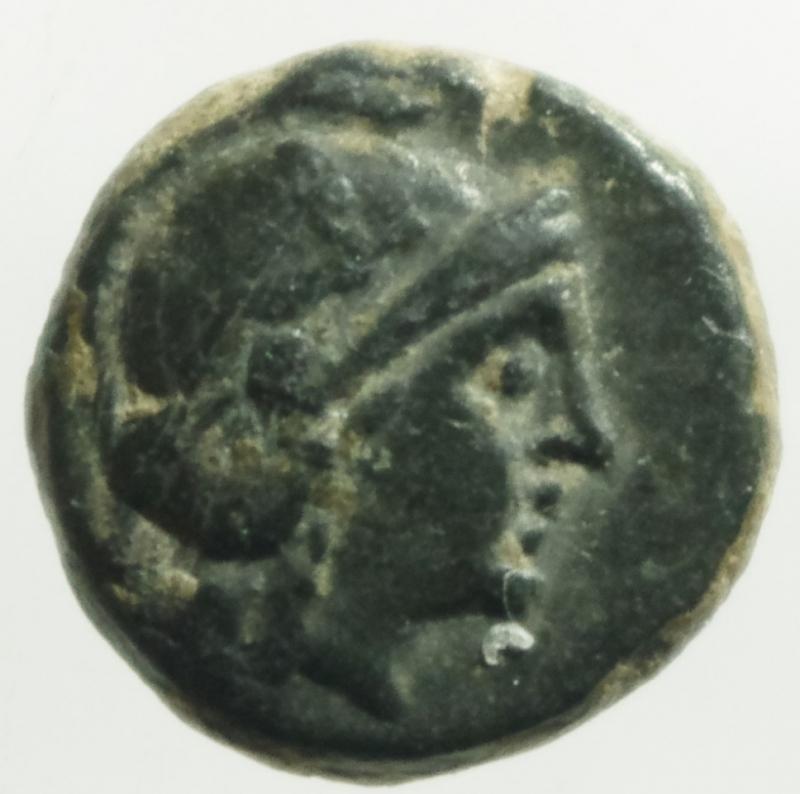 obverse: Mondo Greco.Achemenidi. IV secolo a.C. AE 10.D\ Testa di Apollo a destra R / Foglia e legenda .Peso 2,10 gr.Diametro 11mm.BB+.Molto Raro