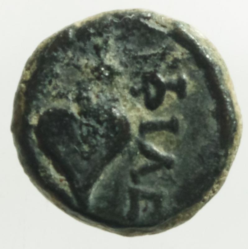 reverse: Mondo Greco.Achemenidi. IV secolo a.C. AE 10.D\ Testa di Apollo a destra R / Foglia e legenda .Peso 2,10 gr.Diametro 11mm.BB+.Molto Raro