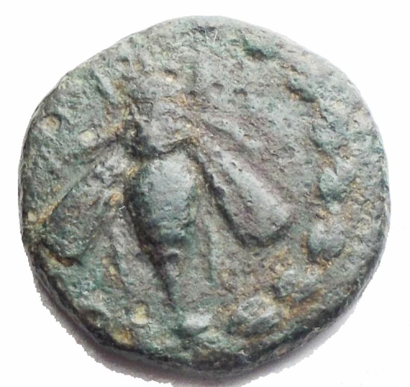 obverse: Mondo Greco - Efeso. 280-252 ac. AE. gr 3,5. mm 15,5. d/ Ape in corona r /Cervo al pascolo a ds. Sopra faretra. BB. Patina verde