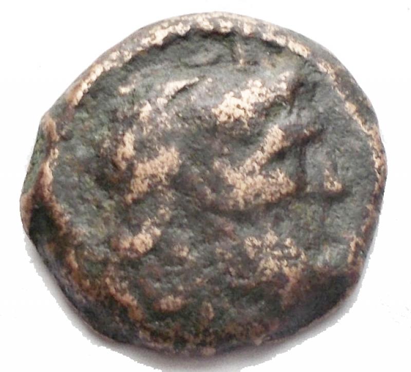 obverse: Mondo Greco - Cipro ?. Tolomeo XIII. ca 80-51 a.C.AE. D/ Testa diademata di Zeus a ds. R/ Copricapo di Iside. Peso gr 2,26. qBB.