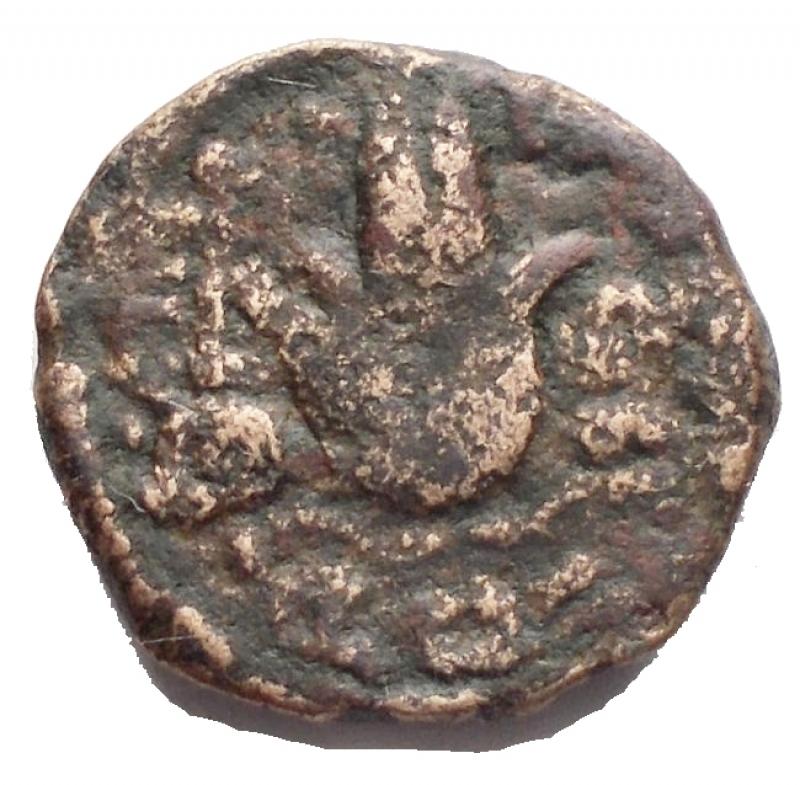 reverse: Mondo Greco - Cipro ?. Tolomeo XIII. ca 80-51 a.C.AE. D/ Testa diademata di Zeus a ds. R/ Copricapo di Iside. Peso gr 2,26. qBB.