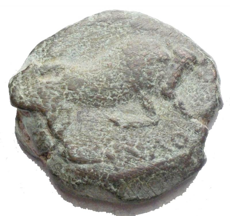 obverse: Mondo Greco - Apulia Arpi(Circa 275-250 a.C.)AE 17,9 x 18,6 mm.D/ Toro cozzante a destra. R/ Cavallo al galoppo a destra. 6,9 gr.HN Italy 645.BB. Patina verde marrone