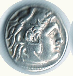 obverse: TRACIA - Lisimaco (305-281 a.C.) - Dracma Magnesia al Meandro.