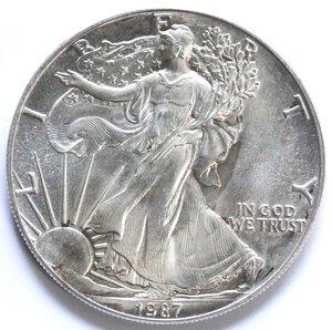 reverse: USA. Dollaro 1987. Oncia. Ag.