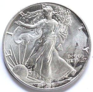 reverse: USA. Dollaro 1988. Oncia. Ag.