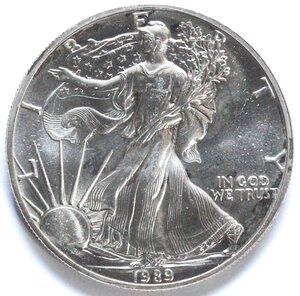 reverse: USA. Dollaro 1989. Oncia. Ag.
