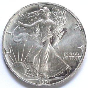 reverse: USA. Dollaro 1991. Oncia. Ag.
