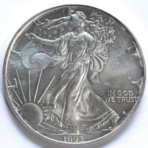 reverse: USA. Dollaro 1993. Oncia. Ag.