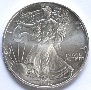 reverse: USA. Dollaro 1995. Oncia. Ag.