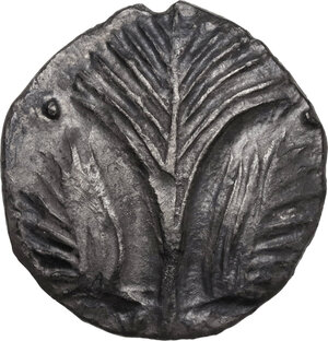 Selinos. AR Didrachm, c. 540-515 BC