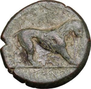 reverse: Bruttium, Rhegion. AE 15 mm, 260-215 BC