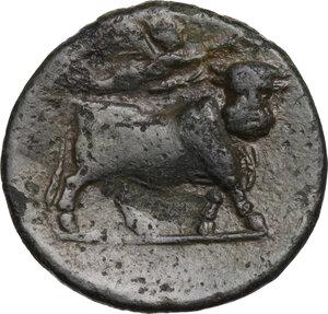reverse: Samnium, Southern Latium and Northern Campania, Aesernia.. AE 18 mm, 263-240 BC