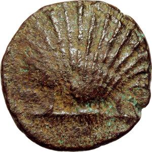obverse: Southern Apulia, Tarentum. AE 13mm, circa 275-200 BC