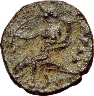reverse: Southern Apulia, Tarentum. AE 13mm, circa 275-200 BC