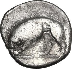 reverse: Northern Lucania, Velia. AR Didrachm, c. 334-300 BC