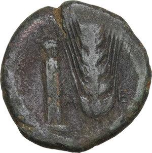 reverse: Southern Lucania, Metapontum. AE Obol, c. 400-350 BC