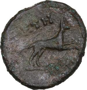 reverse: Bruttium, Petelia. AE 15 mm. late 3rd century BC