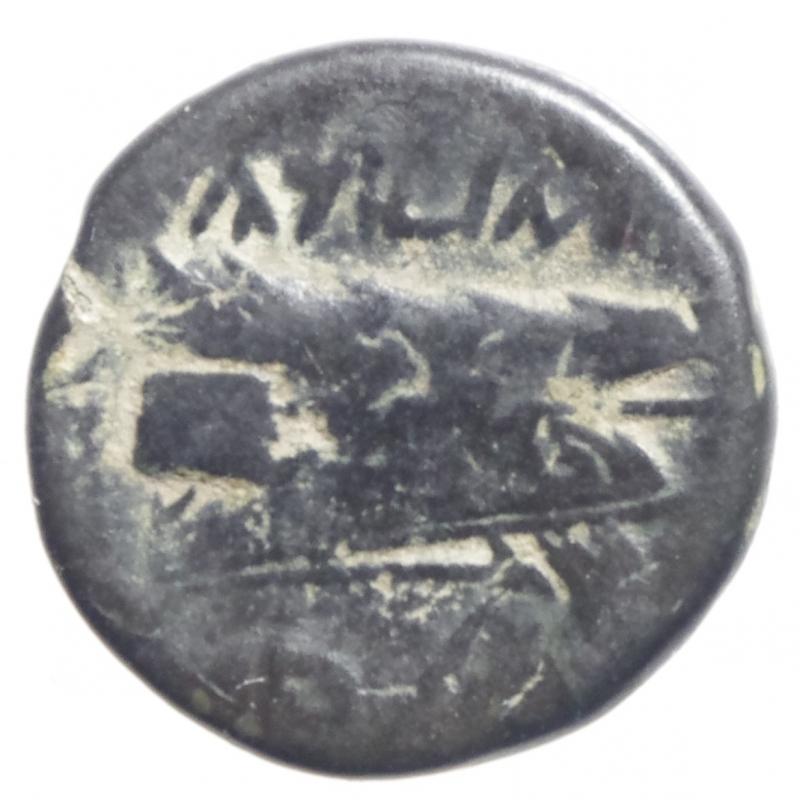 reverse: Mondo Greco.Arados. Phoenicia. 136-51 a.C.D\ Teste appaiate di Zeus e Hera o