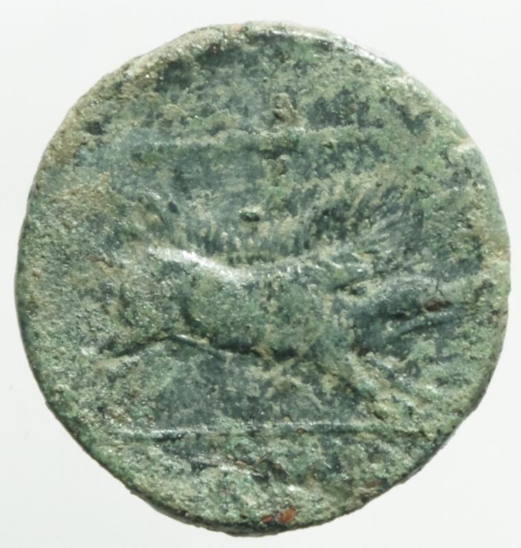 reverse: Mondo Greco .Apulia Arpi. Ca 325-250 a.C. AE 20,9 x 21,1 mm. D/ Testa di Zeus a sinistra. R/ Cinghiale a destra, sopra lancia. 7,40 gr. HN Italy 642. BB+.
