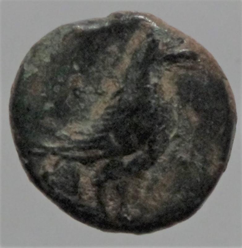 obverse: Mondo Greco. Kyme. Aeolis. c. 350-250 a.C. Ae. D/ Aquila stante a destra. R/ K-Y coppa. BMC 16-20; SNG von Aulock 1625; SNG Newcastle SNGuk_1301_0449. Peso 0,95 gr. BB.