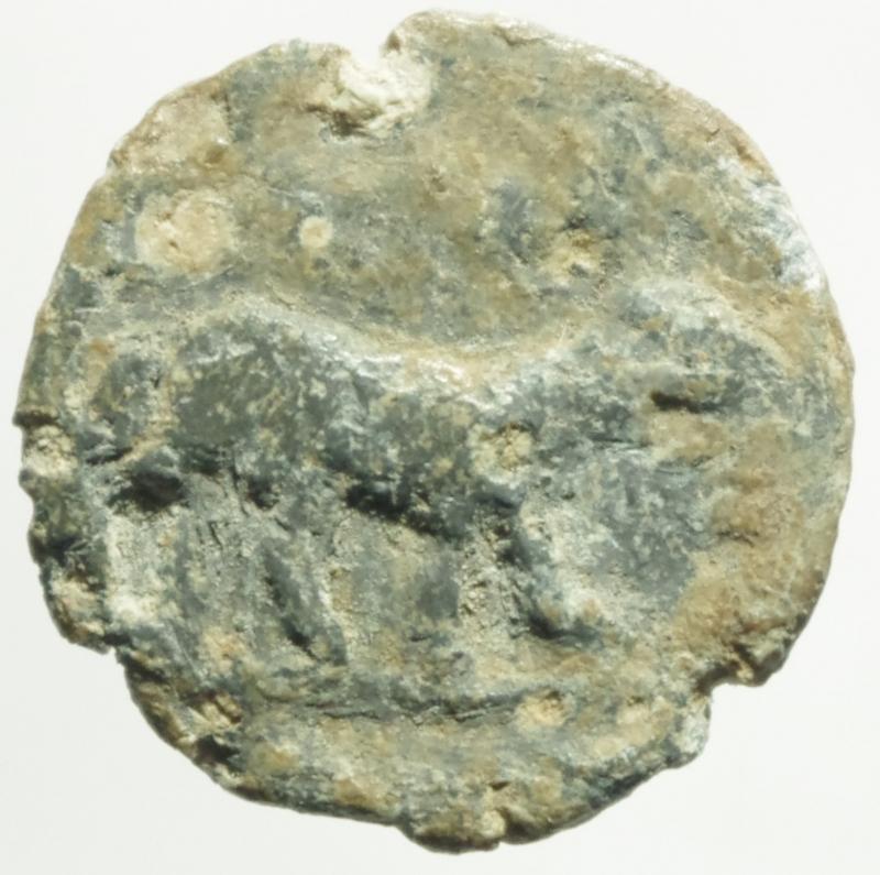obverse: Repubblica Romana.Tessera in piombo con pecora verso destra.Peso 4,10 gr.MB
