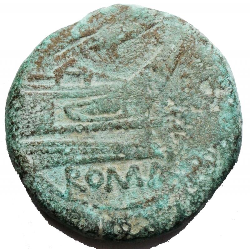 reverse: Repubblica Romana - Asse Ae. d/Testa laureata di Giano, sopra segno di valore r/ Prua a ds, sopra scrofa, sotto ROMA. Rif Crawford 121/3. gr 32,1. mm 32,4. qBB. Intonsa con patina