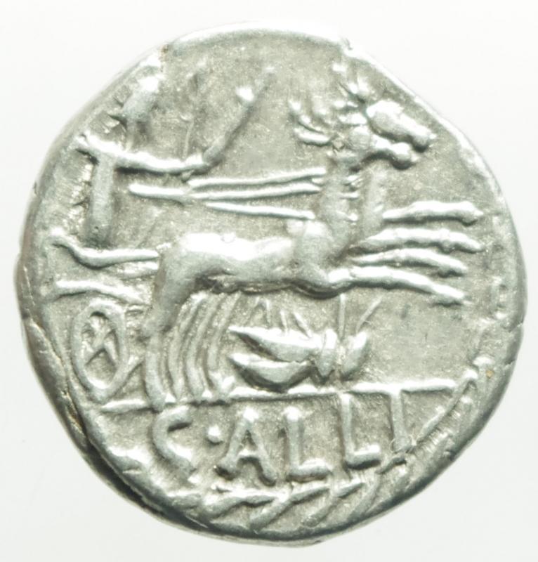 reverse: Repubblica Romana. Gens Aelia o Allia. Caius Allius Bala. 92 a.C. Denario. D/ BALA Testa diademata di Diana a destra, davanti una N. R/ C ALLI (Caius Allius) Diana su biga di cervi verso destra; sotto simbolo; il tutto in una corona d alloro Peso 3,8 g. Diametro 16x17 mm. Cr. 336/1. BB+. NC.