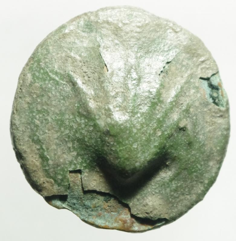obverse: Mondo Greco.Luceria. AE Biuncia ca 217-212 ac. d/ Conchiglia R / Astragalo, sopra due globetti, in basso L. HN Italia 677 d; Vecchi ICC 348. AE. g. 16.90 mm. 25. BB. Patina verde smeraldo.