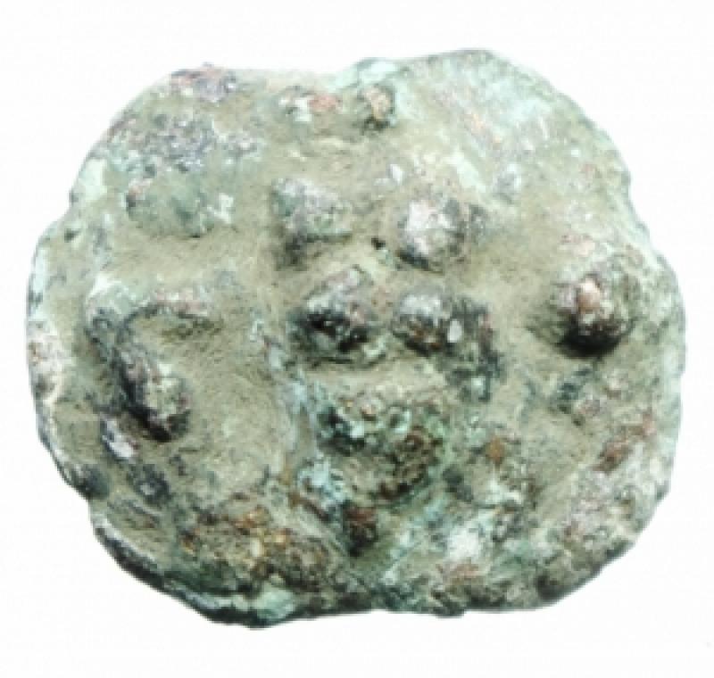 obverse: Mondo Greco. Apulia. Luceria. ca 220 a.C. Oncia. AE. D/ Rana. R/ Fascio di grano. Sopra un globetto. Sotto L. TV 285. Peso 7,10 gr. Diametro 22,00 mm. BB.