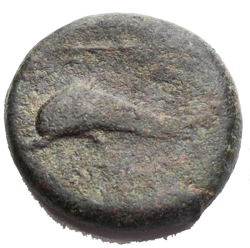 reverse: Mondo Greco - Apulia. Salapia. III sec. a.C.Bronzo. D/ Cavallo in corsa verso destra. R/ Delfino verso sinistra sotto etnico. Peso 7,97 gr. Diametro 20,08BB. R.