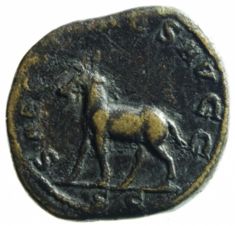 reverse: filippo II sesterzio