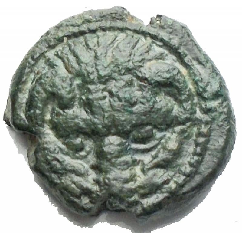 obverse: Mondo Greco -Bruttium, Rhegium.AE 12,2 mm. 350-270 a.C.D/ Testa di leone di fronte.R/Testa laureata di Apollo a destra. Dietro simbolo.gr. 2,07BB+ Patina verde