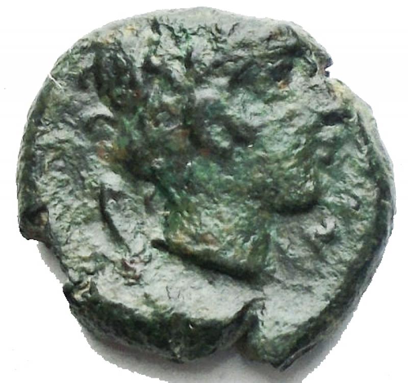 reverse: Mondo Greco -Bruttium, Rhegium.AE 12,2 mm. 350-270 a.C.D/ Testa di leone di fronte.R/Testa laureata di Apollo a destra. Dietro simbolo.gr. 2,07BB+ Patina verde