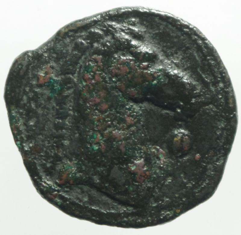 reverse: Mondo Greco. Cartagine. Zecca sarda. III secolo a.C. AE. D/ Testa di Tanit verso sinistra. R/ Protome equina. Davanti simbolo. Peso 5,50 gr. Diametro 19,00 mm. qBB.
