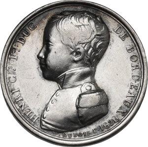 reverse: Maria Carolina Ferdinanda di Borbone (1798-1870) Duchessa di Berry. . Gettone per la nascita del figlio Enrico, conte di Bordeaux. Datata 1828