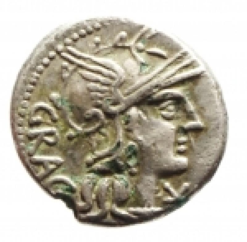 obverse: antestia denario