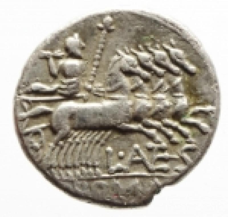 reverse: antestia denario