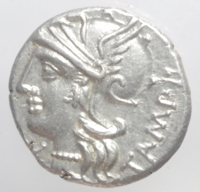 obverse: baebia denario