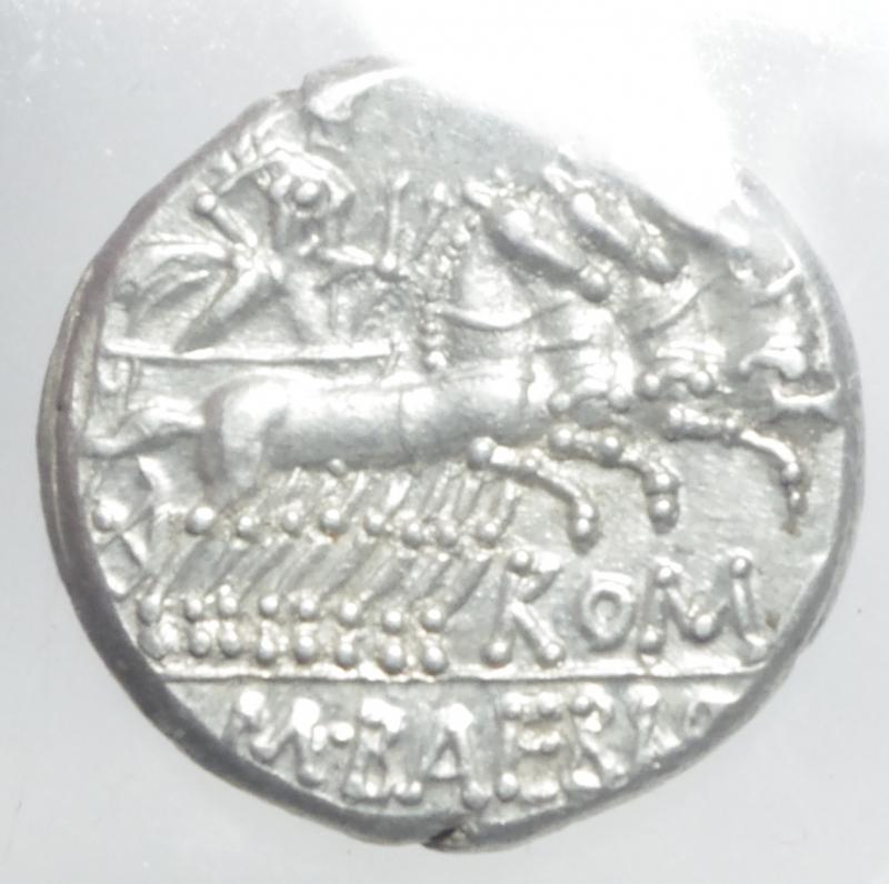 reverse: baebia denario