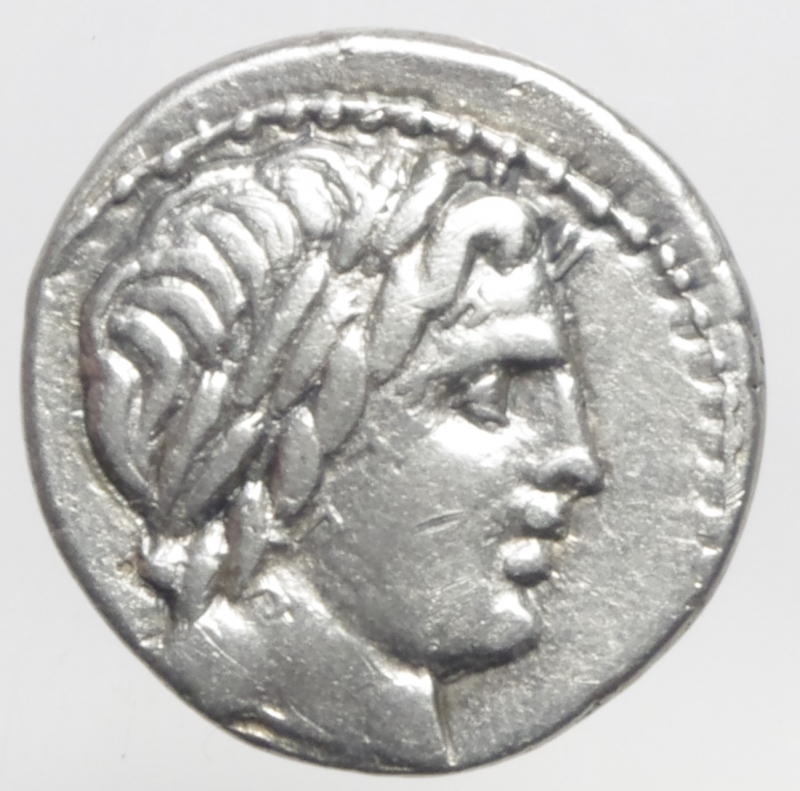 obverse: denario anonimo