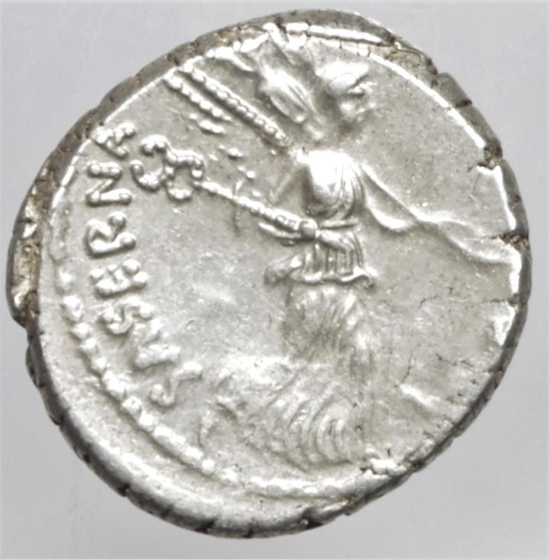 hostilia denario