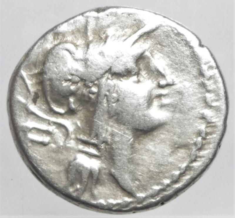 obverse: junia denario