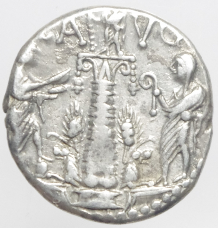 reverse: minucia denario