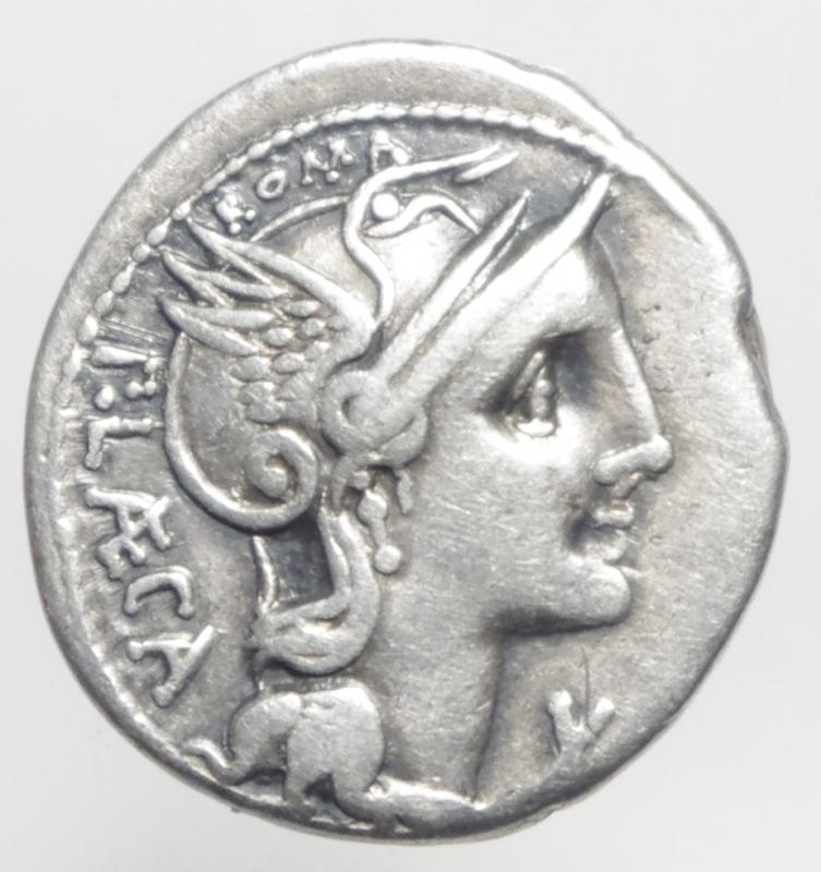 obverse: porcia denario