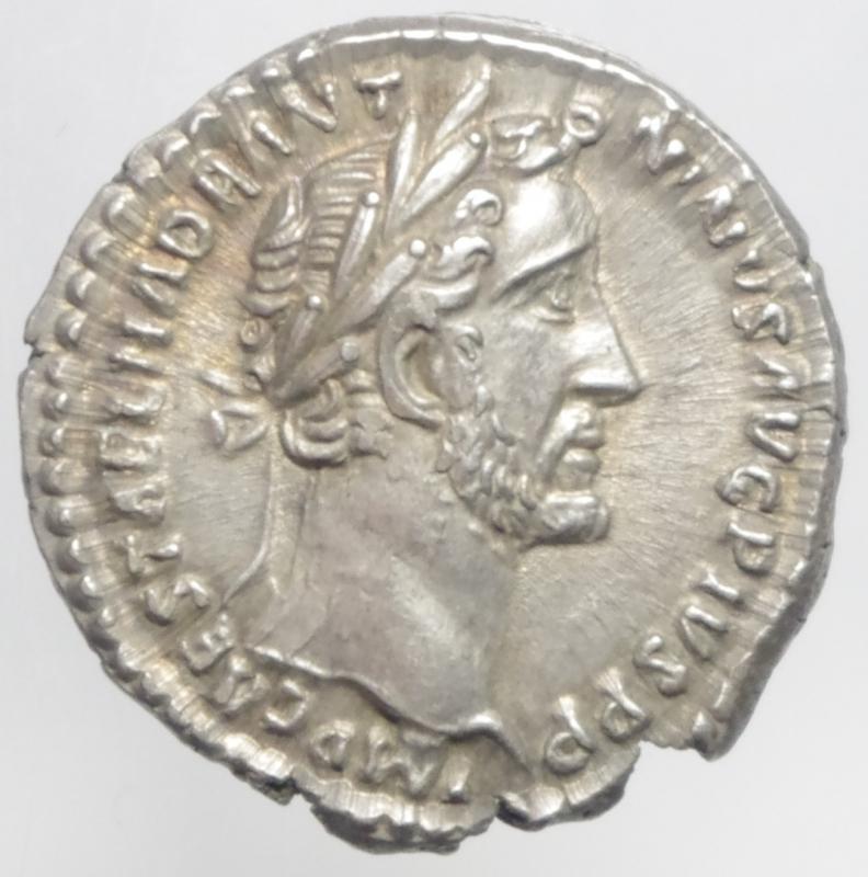 obverse: antonino pio denario