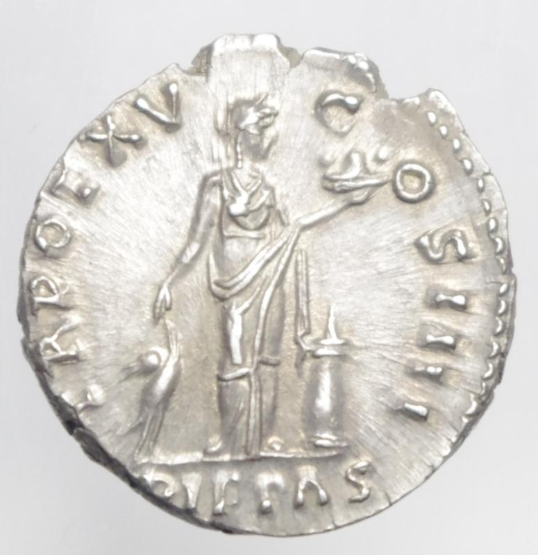 reverse: antonino pio denario