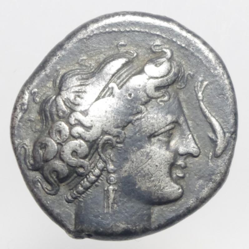 obverse: neapolis nomos