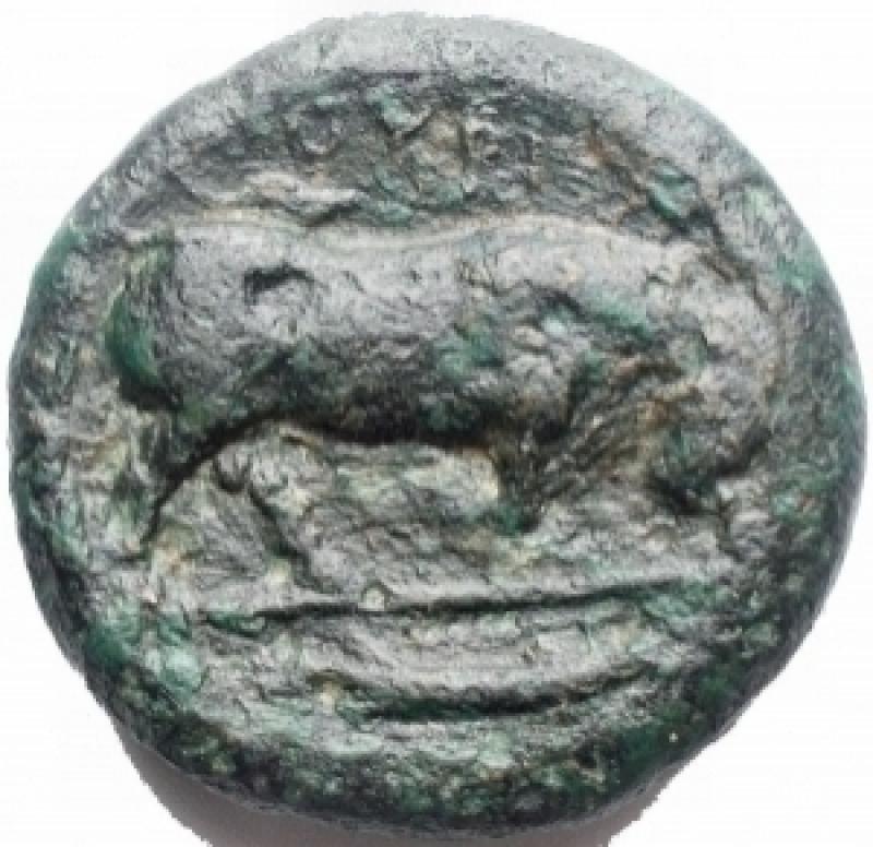 reverse: Mondo Greco - Lucania. Thurium. AE 23,2 mm, ca. 425-400 a.C. D/ Testa di Athena a destra. R/ ΘΟYPIΩΝ. Toro cozzante a destra. In esergo: un pesce. g. 13,7. BB. Patina verde