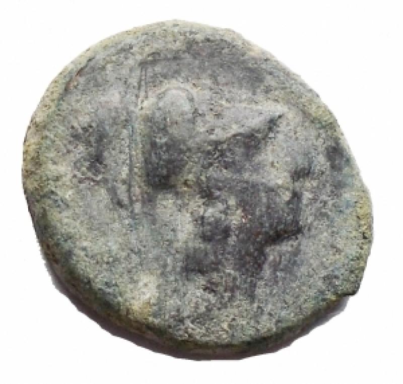 obverse: Mondo Greco - Apulia. Arpi. III° secolo a.C. AE. D/ Testa di Athena con elmo corinzio a destra. R/ APΠANOY. Grappolo d uva. SNG ANS 646. Peso g 3,68. Diametro mm 15,9. BB.
