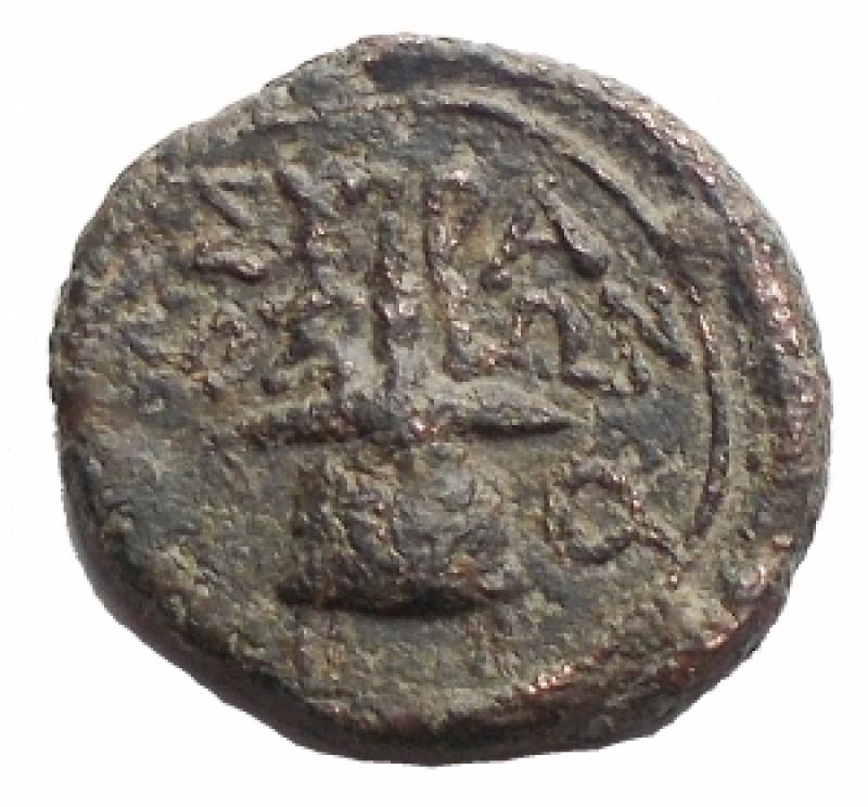 reverse: Mondo Greco - Sicilia. Siracusa. Dominio romano ca 212 a.C. AE. mm 15,2. g 2,45 d/Testa di Apollo a ds. r/Apex. qBB-BB